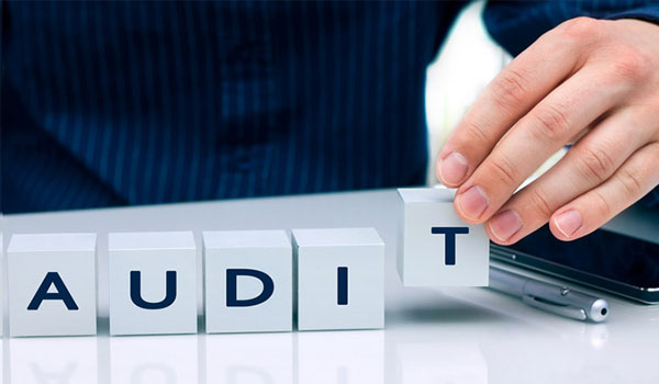 forensic audit firms